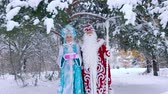 donzela : Father Frost and Snow Maiden standing under snow-covered tree Stock Footage