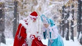 щедрость : Snow Maiden is surprised to see the gifts in Father Frost is red bag