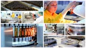 Ampule Medications on the Production Line - Pharmaceutical Manufacturing