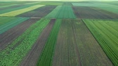 agronomia : Aerial View Of Agricultural Green Fields Stock Footage