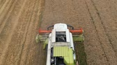 Top View of Combine Harvester Gathers the Wheat Vídeos