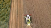 Aerial Flight Over the Harvest Machine During Work