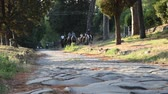 equitation : View of Appia Ancient ancient Roman road