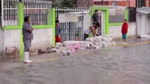 incapacidade : C. Izcalli, State of Mexico 06Sep17. People watching the river created in the streets due the flood by the collapse of the dam El Angulo during torrential rains that affected the area.