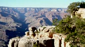 зрелище : Grand Canyon Vista Стоковые видеозаписи