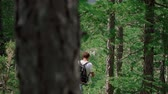 пеший турист : Rear view: couple with backpacks on their backs follow a path in the forest Стоковые видеозаписи