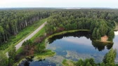 Aerial motion above blue pond near the country road and birds flock flies over pond, Russia Stock Footage
