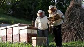 cera de abelha : Work in apiary. Two beekeepers are on spring checking of all details in their apiary.