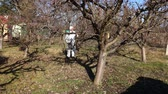 haşarat : Farmer in protective clothing sprays fruit trees in orchard using long sprayer to protect them with chemicals from fungal disease or vermin at early springtime.