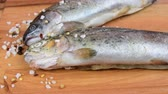 Fresh raw rainbow trouts with spices on wooden board. Healthy food and dieting concept. Close-up