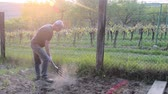 Midle aged man digging soil with garden fork. Mature man in the garden. Gardening and hobby concept