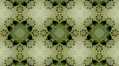 physics : Fractal geometric mosaic Kaleidoscopic