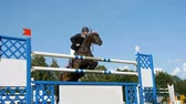 field : HD - Show jumping. Horse jumping obstacles