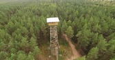 gözcü : 4K - Observation tower in the forest_scene02 Stok Video