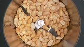 kochen : HD - Food grinder. Nuts grinding Stock Footage