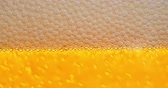 cerveza artesanal : 4K - Beer foam. Foam bubbles close-up Archivo de Video