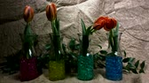 Flowers Are Jumping Against a  juta Background. Red Tulips in the Spring. Filmati Stock