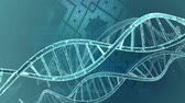 cromossoma : DNA double helix background