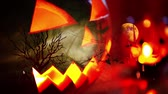tomb : Halloween background with pumpkin and bats Stock Footage