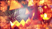 morcego : Halloween background with pumpkin and bats Stock Footage