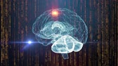 nervoso : Human brain neural network medical background
