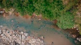 flowing water : Scenic aerial view of river through forest Stock Footage