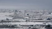 noruega : Sailing on Ice Saling shot from Spitsbergen Norway of Ice on Arctic Sea