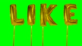 confirmação : Word like from helium golden balloon letters floating on green screen