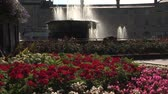 splash park : Water fountains with flowers in city square  Stock Footage