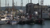 yat : Small yachts and boats docked at harbor with cars passing by in the fishing town of Penzance  Cornwall, UK Stok Video