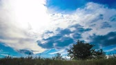 imaginar : Lots of clouds moving across the sky over the land on which the trees, grass, home. Timelapse