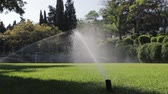 distribuidor : Lawn grass on the football field sprinkles water in summer. Vídeos