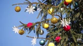 cana : Beautiful, big, tall, decorated Christmas tree with Christmas toys, balls, garlands and various ornaments stands on the street on a background of blue sky and forest.