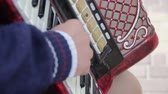 accordionist : Piano Accordion Musician Stock Footage
