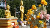 retiro : Thai paper money on a branch of the Marigold on the background of big golden Buddha, Pattaya. Thailand.