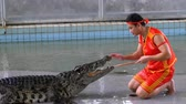 travel cage : Crocodile show at Famous Pattaya Crocodile Farm. Thailand. Man in the cage with crocodiles