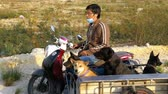 fiel : Dogs are sitting in a trailer of a Thai motorcycle with a stroller. Asia