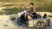 lambreta : Dogs are sitting in a trailer of a Thai motorcycle with a stroller. Asia