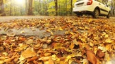Car swirling beautiful autumn leaves. Slow motion transportation scene.