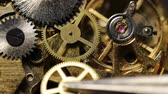 macro fotografia : Mechanical watch repair