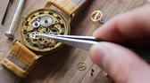 metal gear : Mechanical watch repair