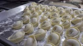 jedzenie : Dumplings lie on the baking tray in rows. Wideo