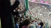 Fans make a wave at the stadium. Stock Footage