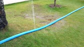 waterworks : water jets from holes in the hose pipe.