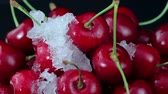 borgonha : A Group of Ripe Red Cherries on The Plate Beautiful With Snow on The Rotating Table. Close up