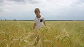 free country : The boy is walking along the wheat field