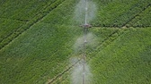 betterave : Irrigation system of fields. Aerial