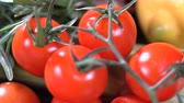 Lemon Tomatoes and Spices Vidéos Libres De Droits