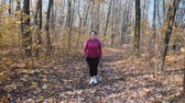 baston : Chubby female doing nordic walking recreational program in autumn park as a part of weight loss program