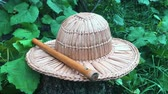 latta : Close up view of straw hat and wooden flute in green garden. Music instrument lying on wooden log Filmati Stock